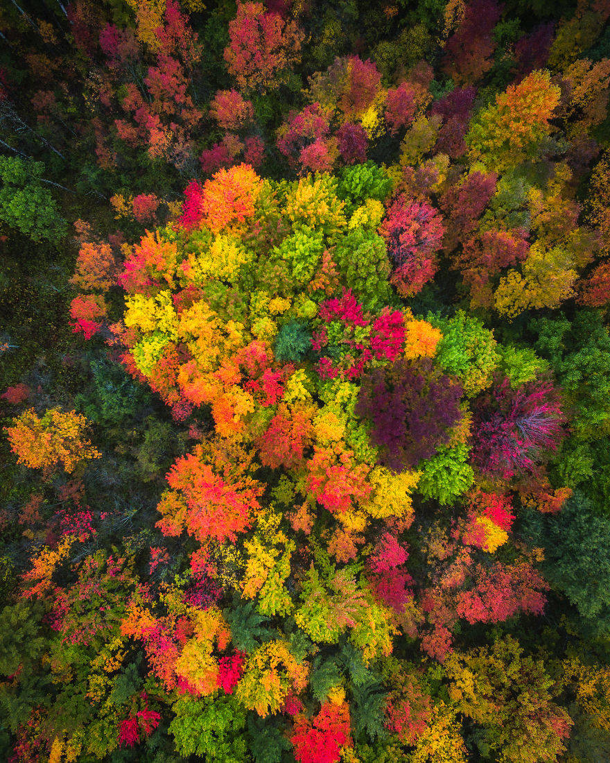 New-York-Fall-Colors-by-drone-by-Michael-Matti-581b63437cc90__880