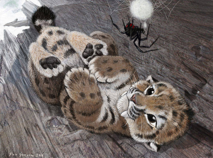 baby_smilodon_and_motherly_spider_by_psithyrus-d71d598-582f1c259aaf8__700