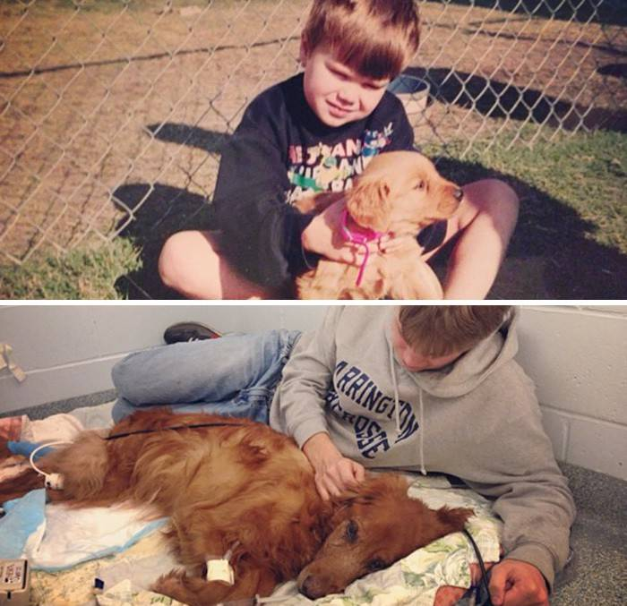 before-after-dogs-growing-up-together-with-owners-12-58256f61c48db__700