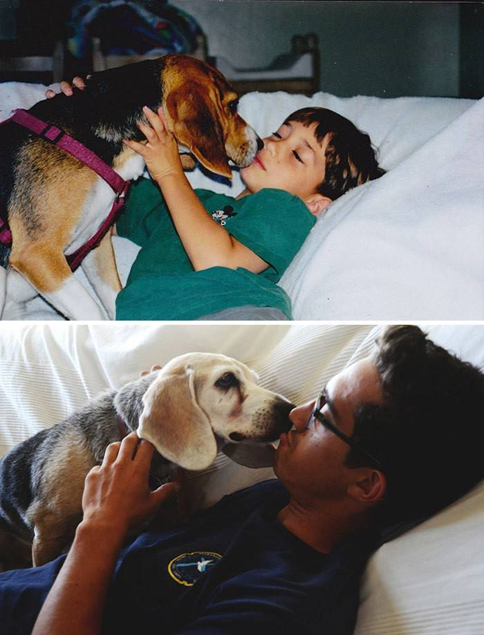 before-after-dogs-growing-up-together-with-owners-8-58256f57c9663__700