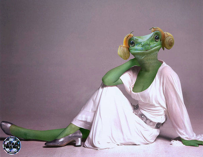 princess-leia-frog-snails-photoshop-battle-3-5839a9ab6da5a__700