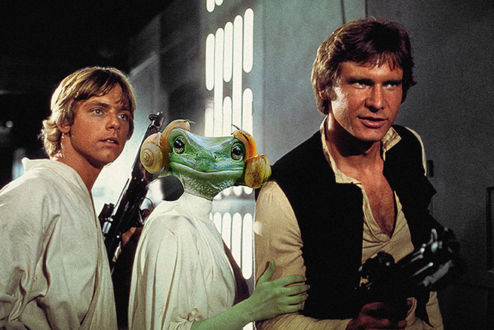 princess-leia-frog-snails-photoshop-battle-5-5839a9aeef878__700