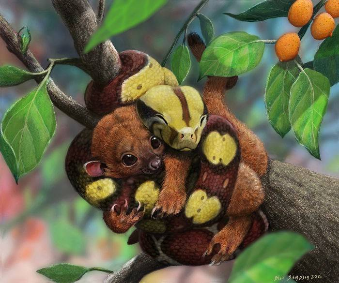 squeezably_soft__baby_boa_and_kinkajou_by_psithyrus-d9b591u-582f1d49cab44__700