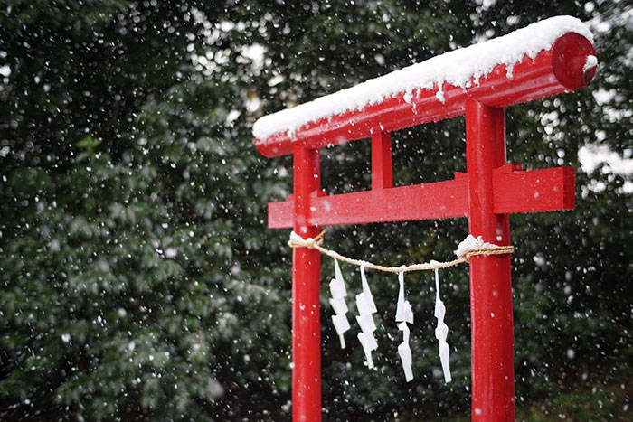 tokyo-first-snow-november-2016-36-58381206cce19__700