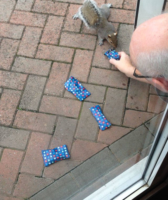 1tiny-christmas-presents-squirrels-dad-6