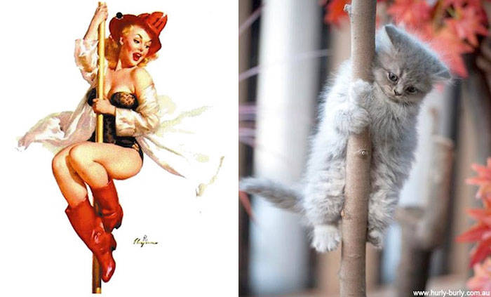 cats-vintage-pin-up-girls-26-586666fc04b9f__700