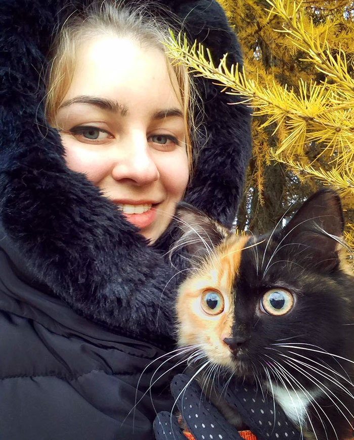 two-faced-cat-yana-25