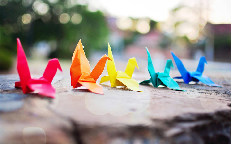фотосессия с бумажными птицами малогабаритных