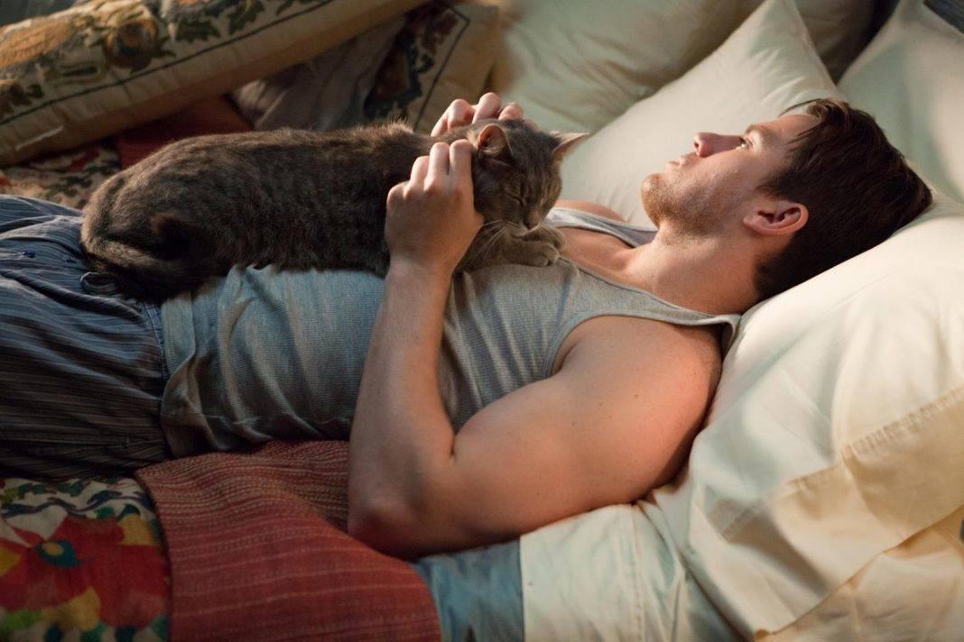 данные купить мужчины и кошки фото менеджеры-консультанты расскажут