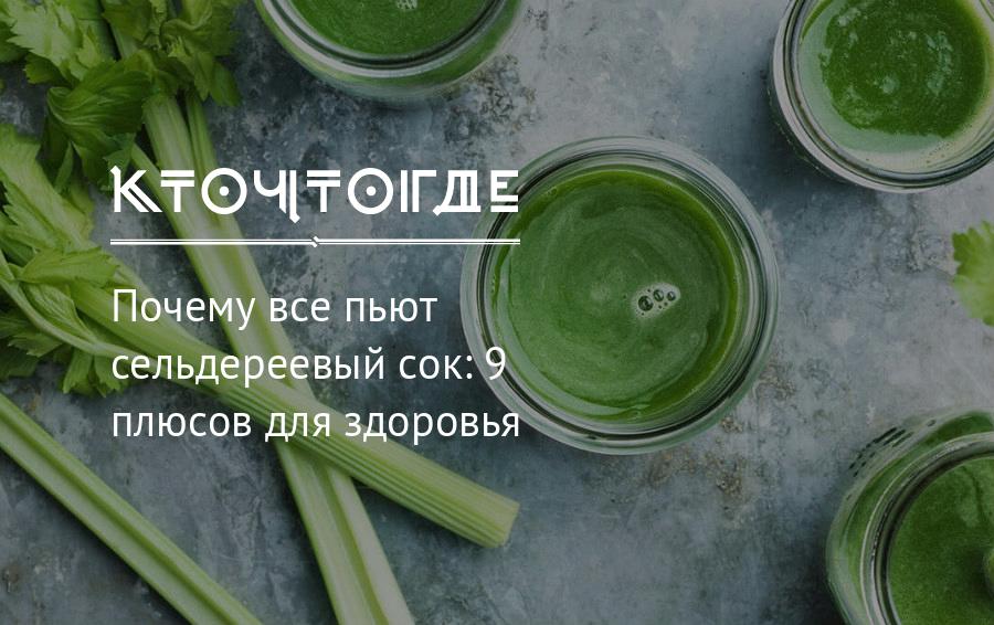 Сок сельдерея - свойства, польза и вред, противопоказания, отзывы