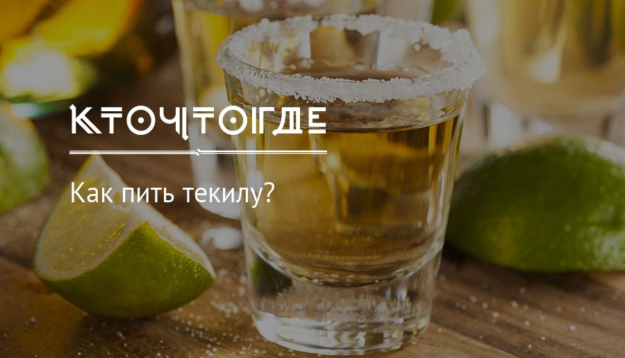 Текила ольмека как правильно пить