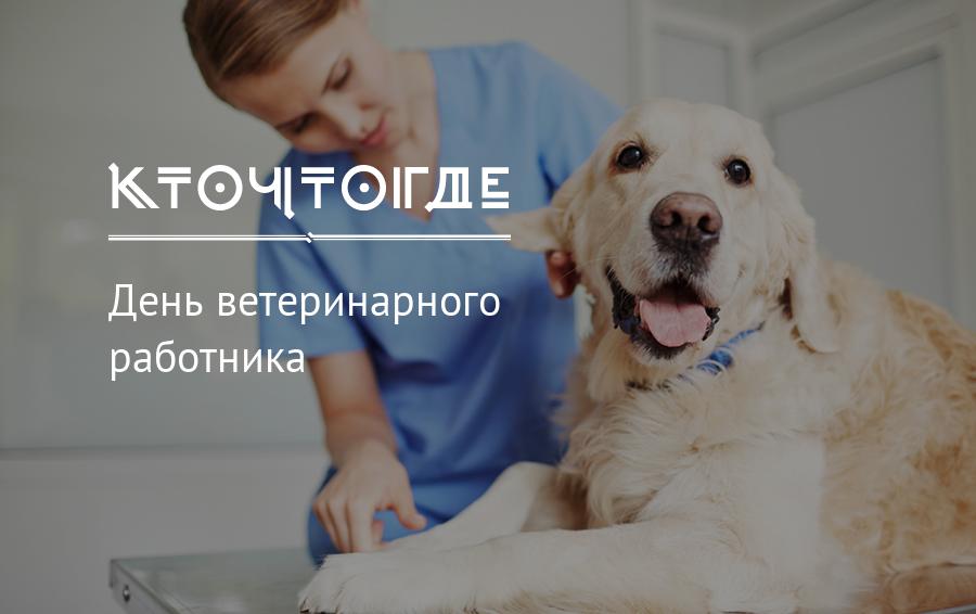 den-veterinarnogo-rabotnika-otkritki-s-pozdravleniyami foto 5